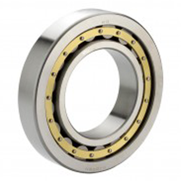 Cylindrical Roller Bearings Supplier
